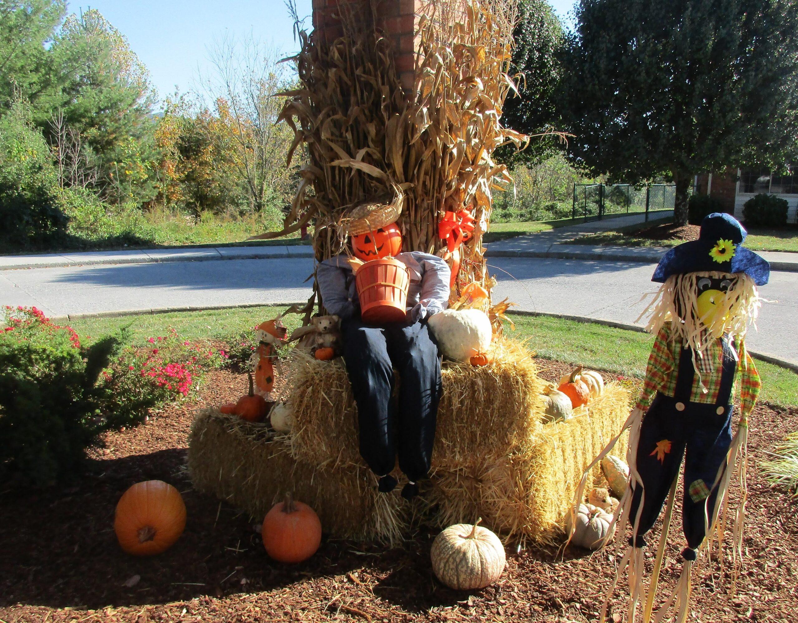 Halloween Costume Parade 1