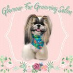 Glamour Fur Grooming Salon