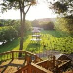 Nolichucky Vineyard Weddings & Events